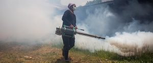 mosquito_control, insecticide, world-mosquito_day