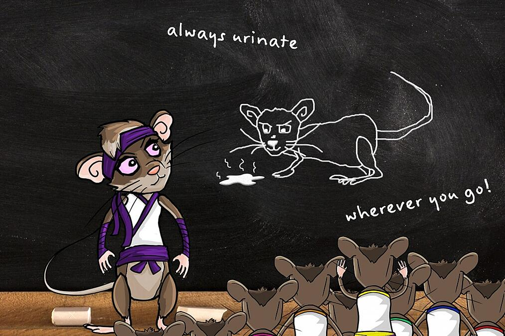 Rodents urinate to mark their territory and communicate with other members in the group.