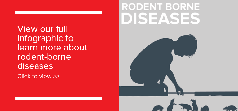 Rodent borne diseases