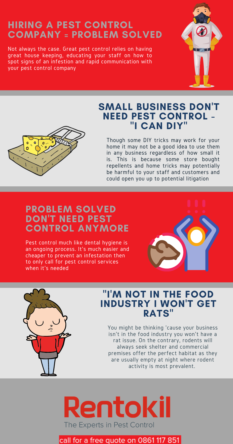 Commercial rat and mice control myths - why you need professional rodent control for your business