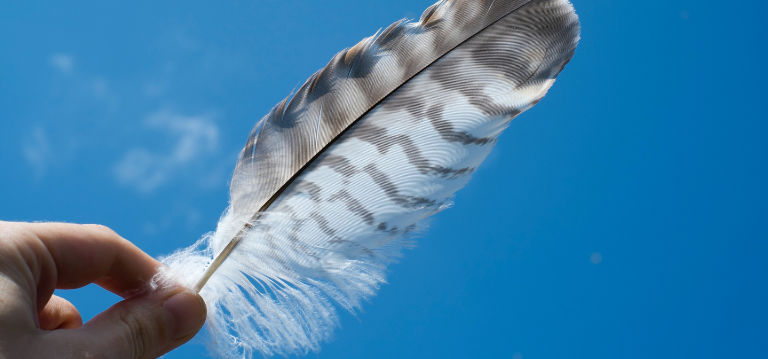 Using feathers to prank rats and mice into thinking that there is a natural predator nearby. You can also use cat litter or fake snakes to deter rodents if you have a pest problem