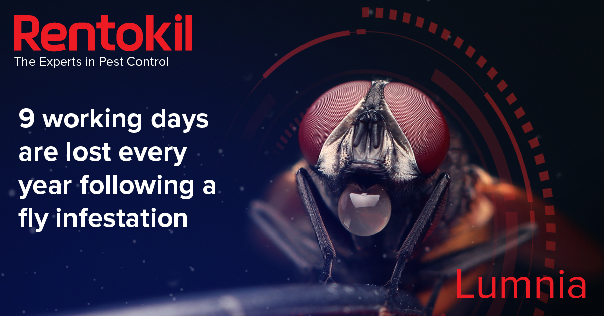 9 working days lost every year due to fly infestations. Find out more on the Rentokil blog from South Africa